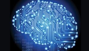brainsnotcomputers
