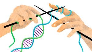 DNA Knitting